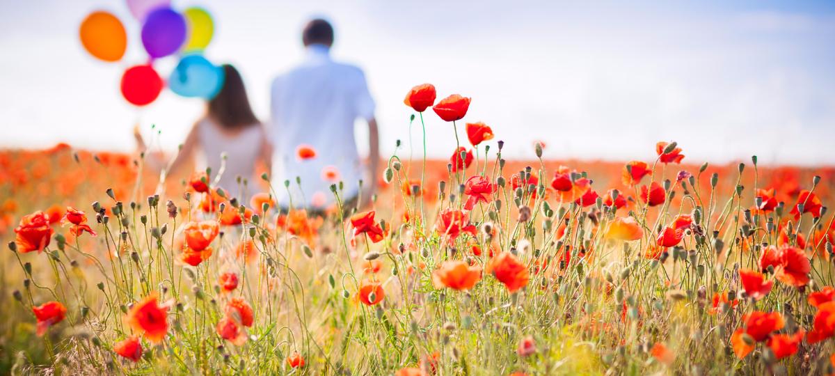Couple dans un champ de coquelicots